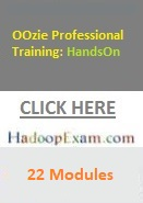 OOzie Professional Training