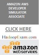 AWS Developer Certification