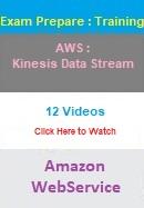 AWS Kinesis Data Stream Training for certification