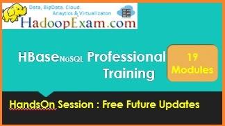 HBase Professional Training