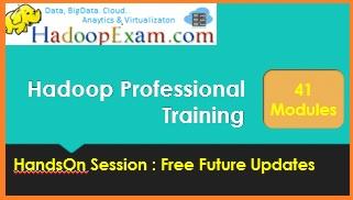 Hadoop Professional Training