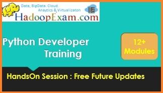 Python Professional Training