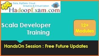 Scala Professional Training