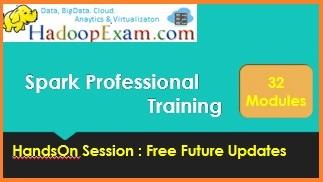 Spark Professional Training